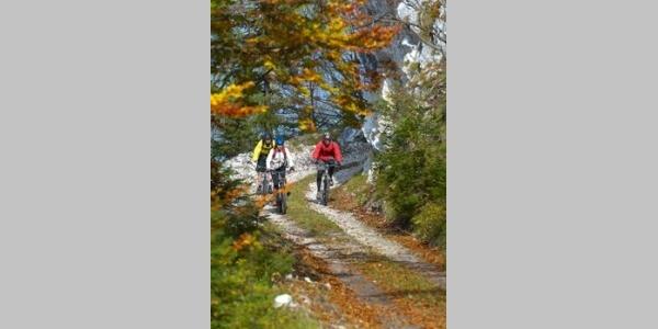 Siebenhütten Downhill