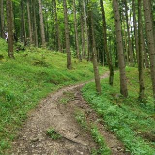 Neuer Kobelweg