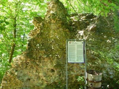 Mauerreste der ehemaligen Schrotzburg
