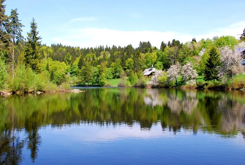 Dachsberg: Auf dem Schluchtensteig nach Ibach