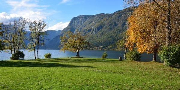 The eastern part of Lake Bohinj