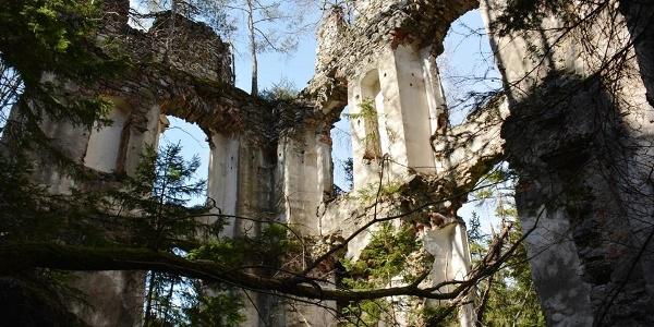 Ruine Waxenegg