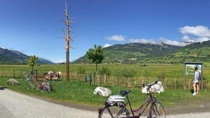 """Radinsel """"Schlangenbaum"""" direkt am Tauernradweg"""