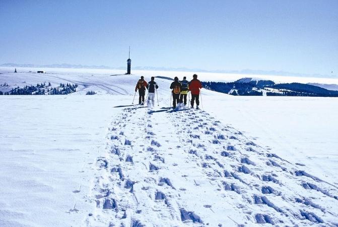 Gipfeltour am Feldberg - Schneeschuhtrail