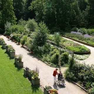 Duft- und Aromagarten