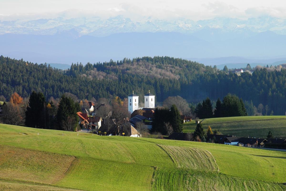 Blick nach Herrischried in Richtung Süden
