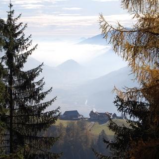 Blick zum Himmelbauer vom Weg zur Staneralm
