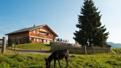 Alpe Rona am Hochplateau Tschengla