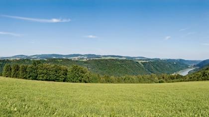 Blick ins Donautal in Richtung Schlögener Schlinge