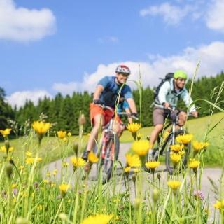 Fahrradtour im Hotzenwald