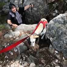 Mit dem blinden Hund im Steig