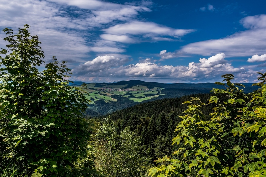 Herrischried: Nordic-Walking-Arena-Tour 2