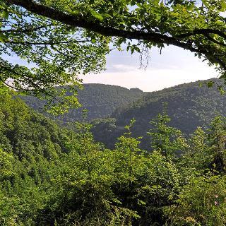 Blick übers Erdenbachtal