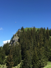 Blick auf den Gipfel © Tourismusverband Tannheimer Tal