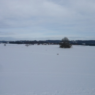 Winterlandschaft an der Loipe Bad Grönenbach