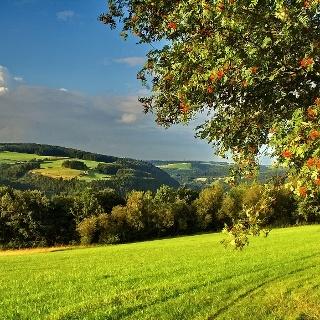 Partnerweg des Eifelsteiges: Rur-Olef-Route