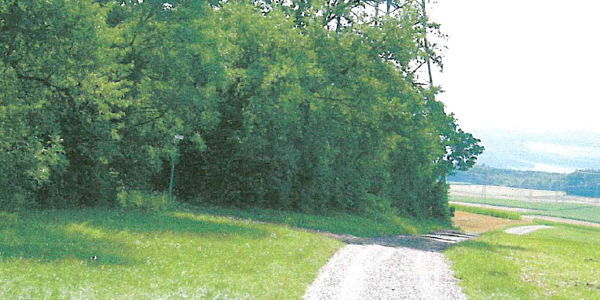 Auf dem Klosterweg
