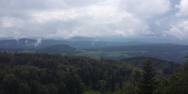 Sicht in Richtung Süden von der Grenze auf dem Birtelhollen