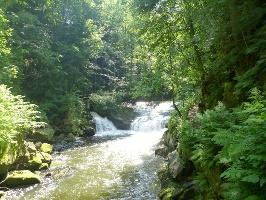 Foto Wasserfälle der Wesenitz bei der Daubemühle