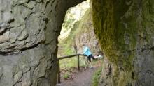FS-Trailissimo ultra ~ Trail-Region Fränkische Schweiz