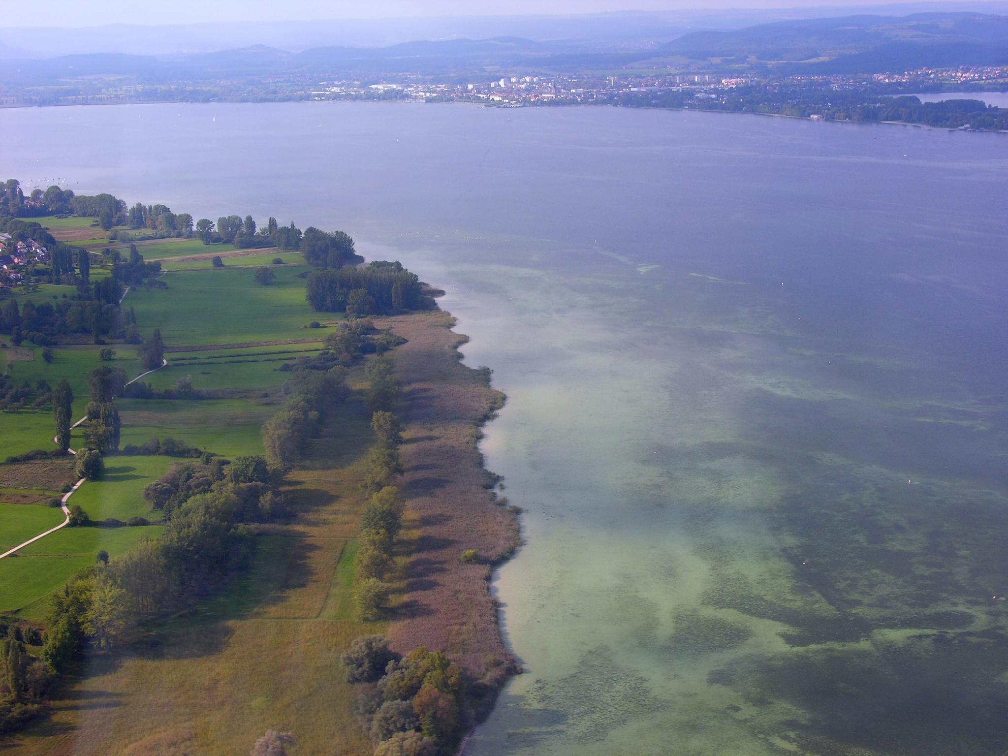 Zeller See, Luftbild mit Blick vom Naturschutzgebiet Hornspitze auf der Höri bei Gaienhofen in Richtung Radolfzell