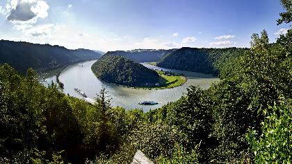 Schlögener Schlinge Panorama