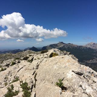 Blick vom Gipfel in Richtung Puig Major