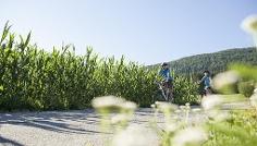 Fahrradroute Pustertal: Etappe Innichen - Lienz (A)