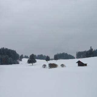 Hügellandschaft bei der Alpe Hochegg