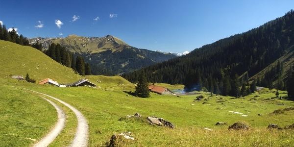 Prättigauer Höhenweg - die Alp Stürfis