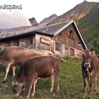 Alp Sanaspans
