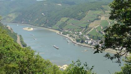 Der Rhein mit Burg Rheinstein und Assmannshausen