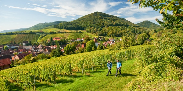 Malerischer Blick auf Leinsweiler