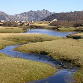 Die Pozziwiesen