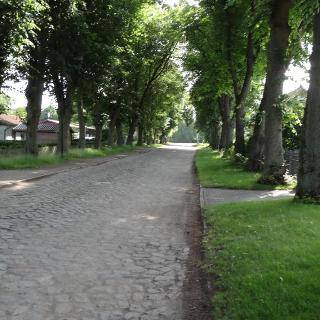 Flessenow