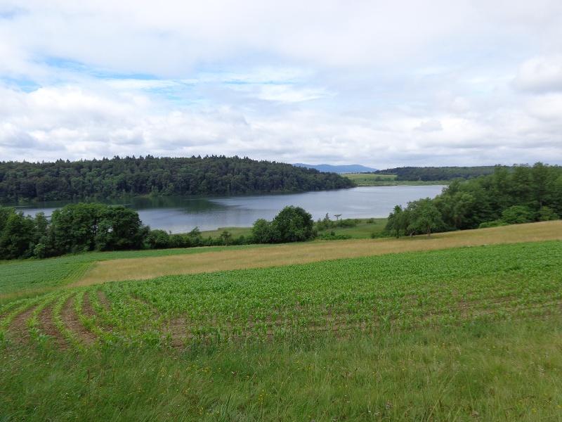 Bodanrück-Entdecker-Tour - Landschaft und Natur per E-Bike erleben