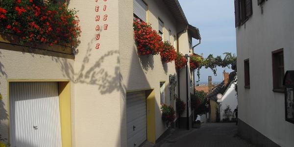 Am Ende unserer Tour gelangen wir wieder zurück in das Weindorf Wachenheim an der Weinstraße.