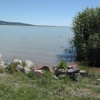 Ufer des Plattensees bei Balatonszepezd
