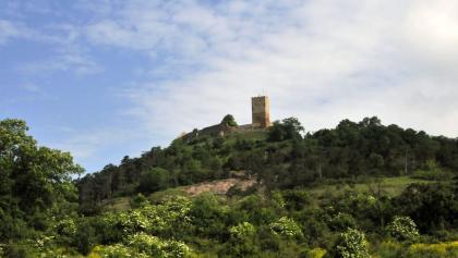 Burg Gleichen vom Tal aus - Wandersleben