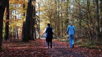 Nordic Walking im Bellheimer Wald
