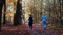 Bellheim - Nordic Walking Park - Runde 3
