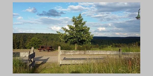 Ausblick vom Hotel über den Thüringer Wald