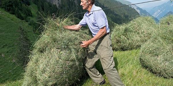 Eine vom Fond Landschaft Schweiz ausgezeichnete Landschaft: Die Wildheulandschaft Isenthal