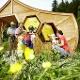 Hollersbach-Die-Welt-der-Bienen-einmal-anders
