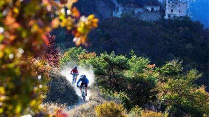 On flowing trails in Vinschgau
