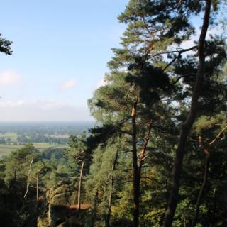 Blick von der Aussichtsplattform an der Almhütte an den Dörenther Klippen