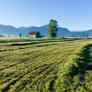 Wanderung - Weiler-Rundweg - Blick in die Berge