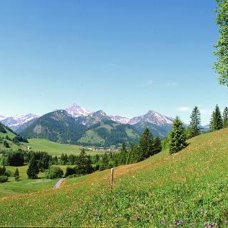 Tannheimer_Tal_Landschaft_3