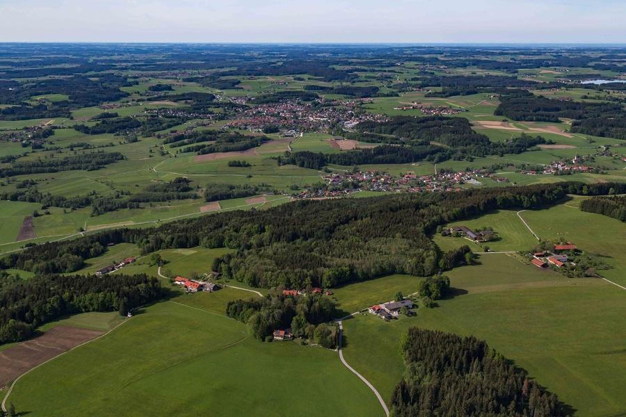 Forstweg Ratzinger Höhe