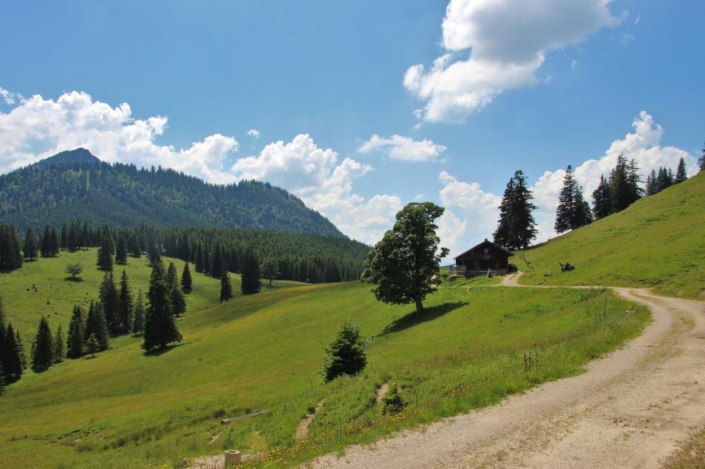 Weg zur Bärenmoosalpe - für Wanderer oder Mountainbiker - @ Autor: Julian Knacker - © Quelle: Pfronten Tourismus
